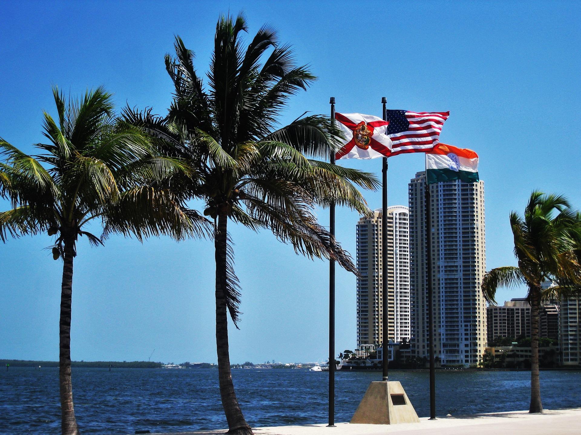 Miami SEO - SEO, Outreach & PPC Expert
